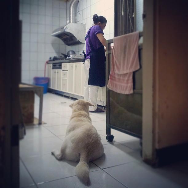 20130608 乖乖等阿嬤準備晚餐。