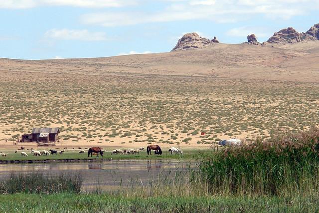 Varios grupos de Kazajos viven por ésta parte del país y junto a recursos como las lagunas que en éste caso rodean las Mongol Els para que los animales puedan sobrevivir. El entorno sagrado de las dunas Mongol Els de Mongolia - 9056740171 8df1a6c1e5 z - El entorno sagrado de las dunas Mongol Els de Mongolia