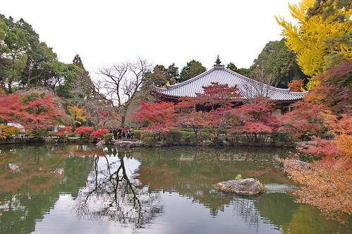 【写真】2012 紅葉 : 醍醐寺/2020-08-07/IMGP6864