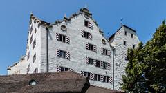 2013-07-13-140451_Wildegg_Schloss Wildegg