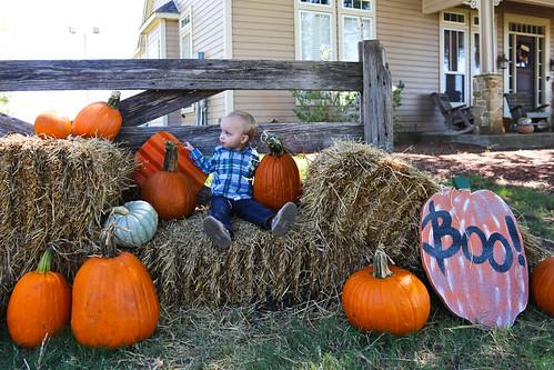 Big Orange Pumpkin Farm-11.jpg