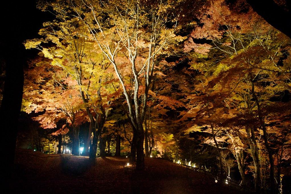 2013 Japan Fall