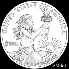 2014 American Eagle Platinum design AEP_R_11