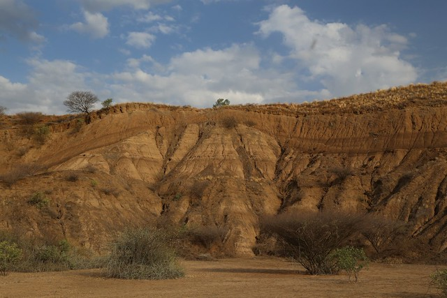 Omo Kibish stratigraphy showing unconformity