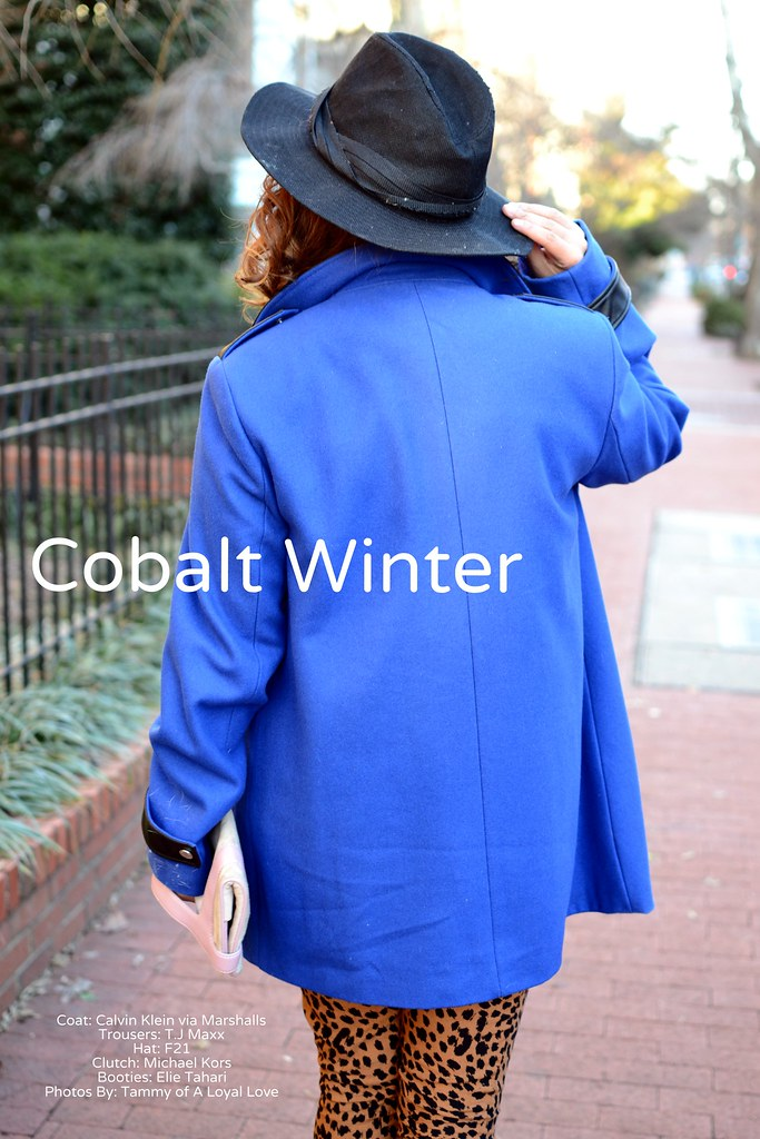 Spicy Candy DC. Cobalt blue coat, leopard print  trousers 038