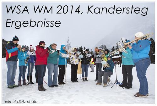 WSA WM 2014 Schlittenhunderennen, Kandersteg (CH)