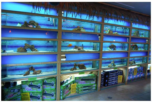 Bamboo Fish Tank 04