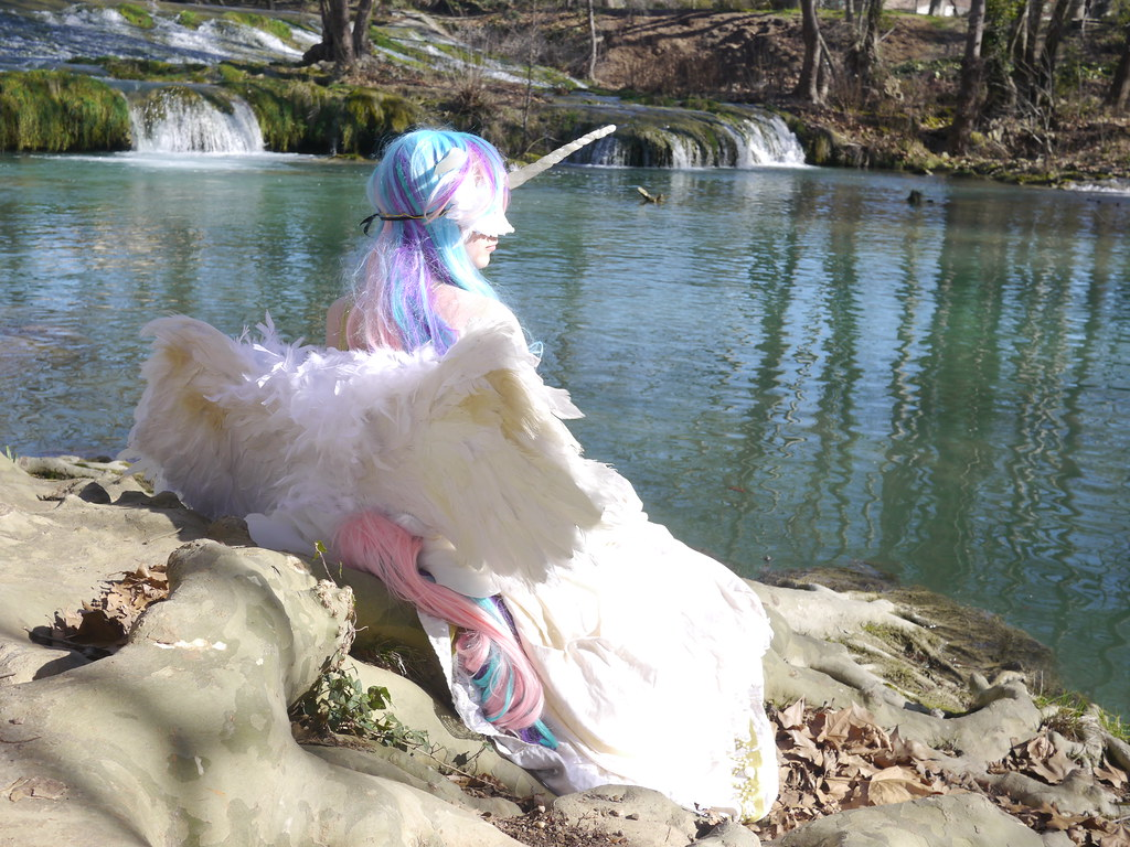 related image - Shooting Celestia - My Little Pony - 2014-02-23- P1780504