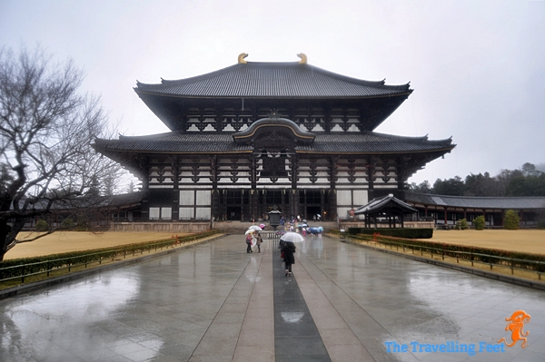 the Todaiji Temple in Nara, Japan