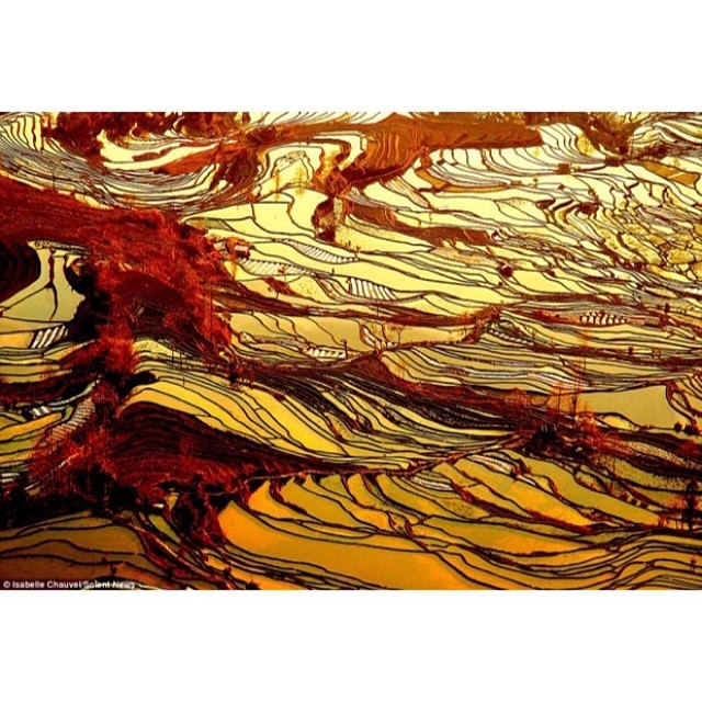 Yuanyang County, China; The farming techniques in Yuanyang County have created a landscape which is truly amazing from the air. These rice fields are located on the slopes of Ailao Mountain, where the terraced levels help create flat surfaces along an une