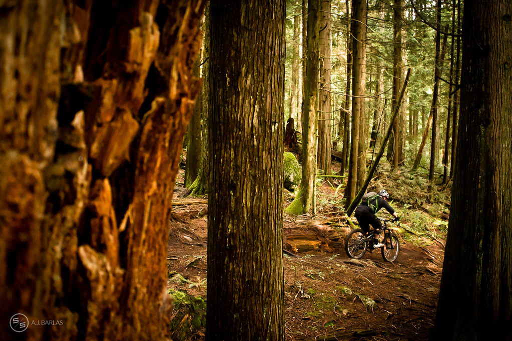 Racer rallies Dreamweaver during the North Vancouver Enduro