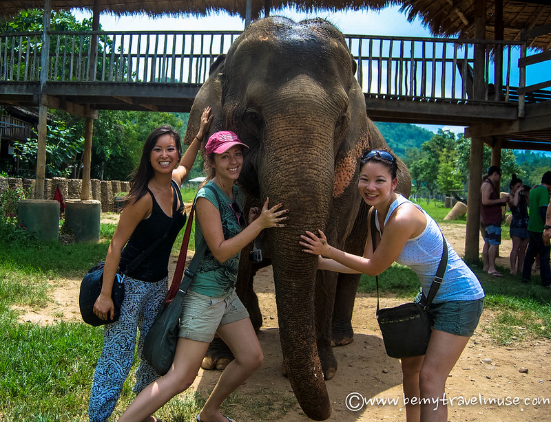 elephant volunteering thailand