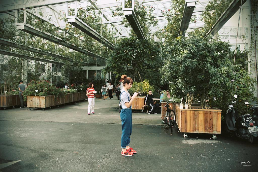宜蘭香草菲菲的植物園藝課