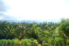 Seririt, Indonesia