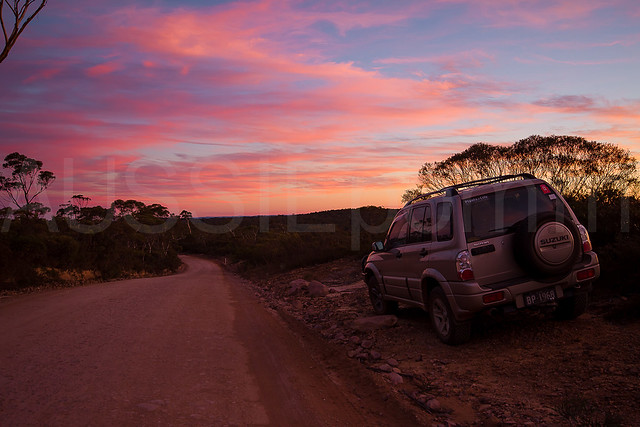Newnes State Forest Sunset
