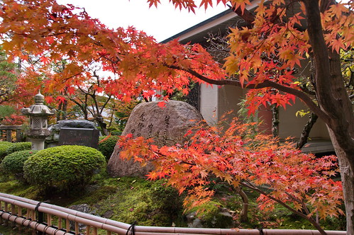 【写真】2012 紅葉 : 光明寺/2020-11-11/IMGP6514