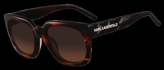 7 Karl Lagerfeld