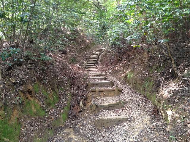 南宮山 ハイキングコース