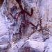 3rd Place - Historical - Frank Zurey - Petroglyphs