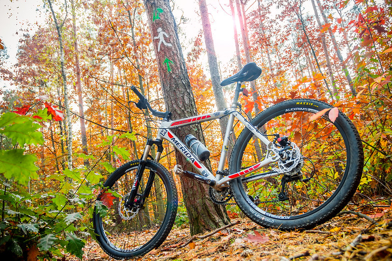 Merida MTB Bike in forest