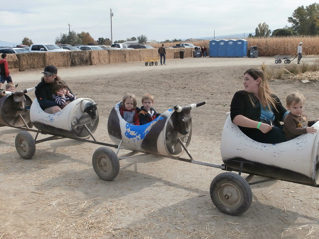 Colorado Halloween Activities - Studt's Pumpkin Patch tractor pulled ride