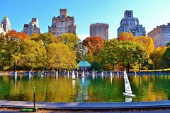 Central Park-Conservatory Water, 11.02.13