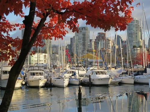 Autumnal marina