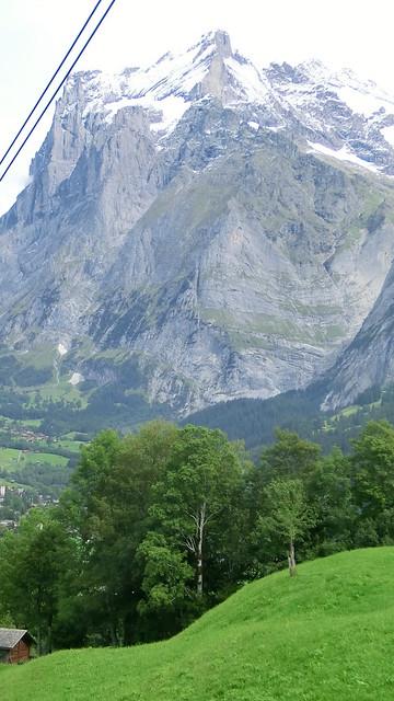 Berg und Wald und Strom und Feld Zahnradbahn Greindelwald 2708