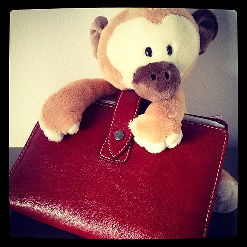 #fflovephotoaday - Day 6: Touchy, Feely. Little Monkey looooves my #filofax