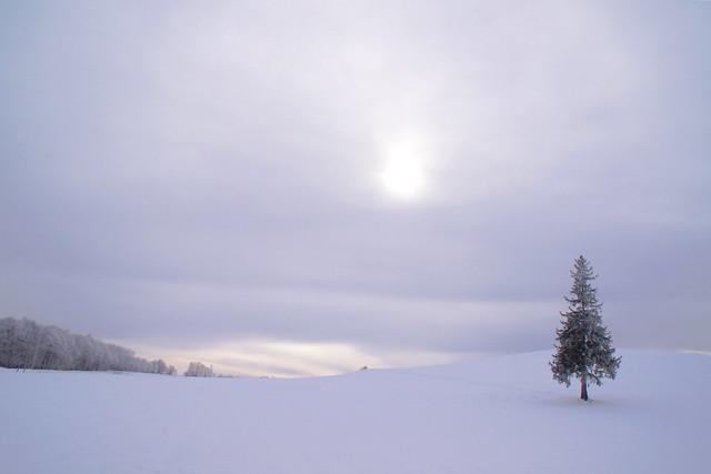灰色の空と大地