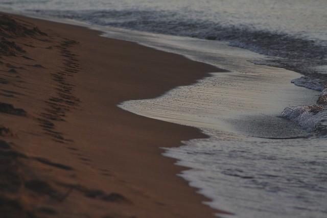 last summerholidays