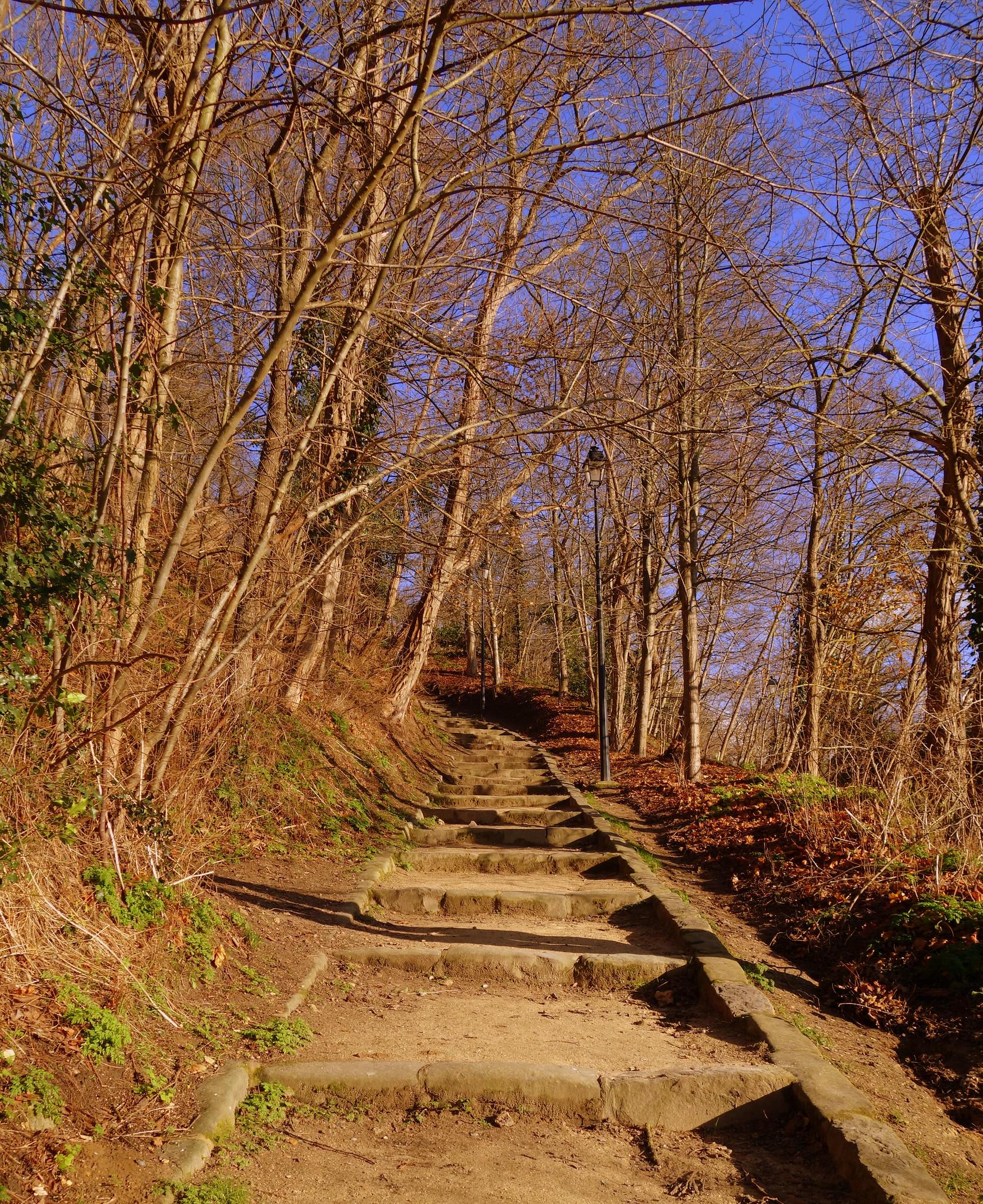 Ch teau de la madeleine chevreuse 78 vallee de l for Parc des yvelines