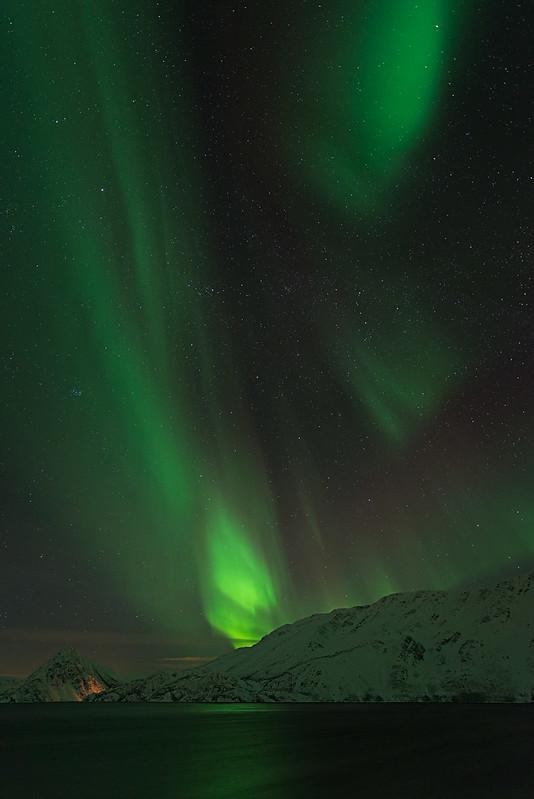 Aurora - Langfjord, Norway