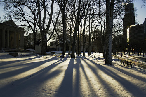 city morning trees winter shadow urban usa sun sunlight snow philadelphia america sunrise unitedstates pennsylvania pa philly rodin thethinker benfranklinparkway 215 rodinmuseum cityofbrotherlylove benjaminfranklinparkway