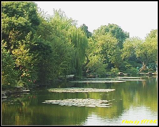 杭州 西湖 (其他景點) - 442 (西湖小瀛洲)