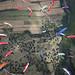 13th FAI World Paragliding Championship