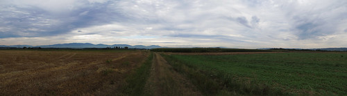 20130819 11 055 Jakobus Feld Wiese Hügel Weg_P01