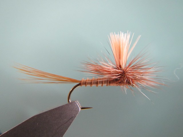 March Brown Western Parachute