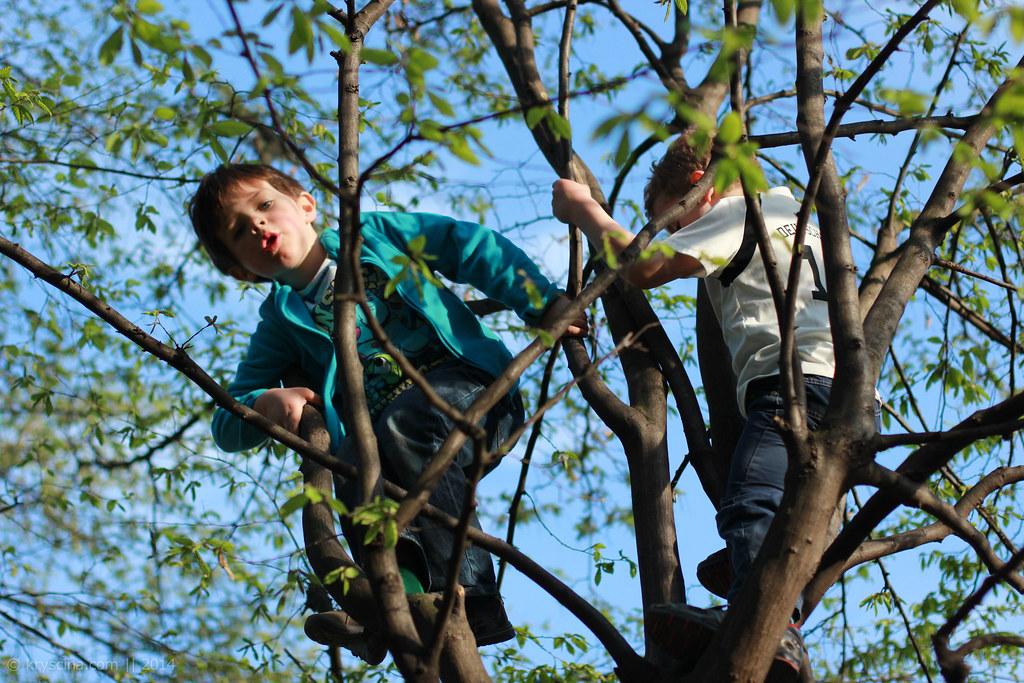 Kids & Spring [7]