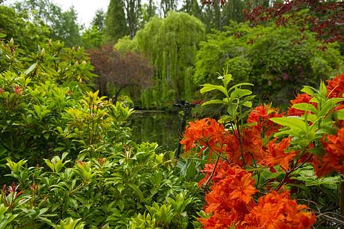 2014-05-22_092 Butchart Gardens