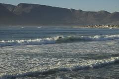 International Surf day 2015-139