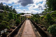 Jardin du Levant, Brittany, France