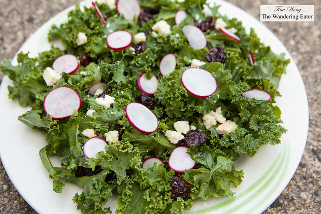 Kale, dried cherries, ricotta salata and radish salad with lime vinaigrette