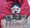 Homeless, but has a home.
