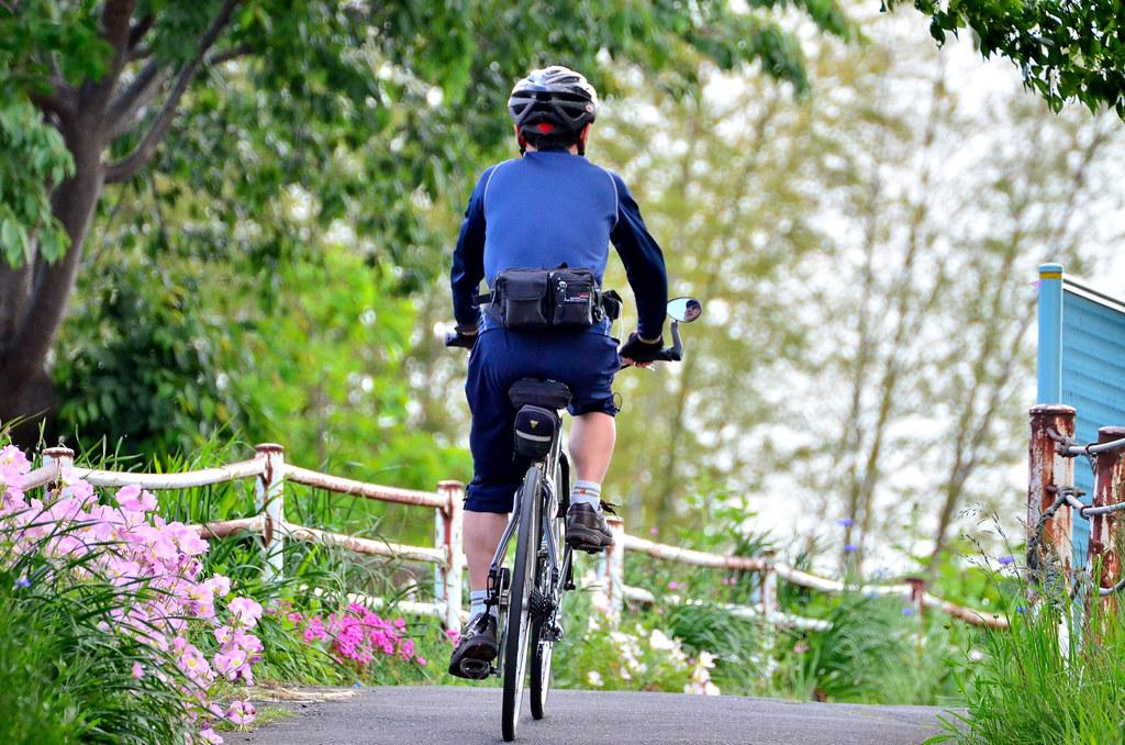 鶴見川青少年サイクリングコースを走るサイクリスト (Cyclist to touring the Tsurumi River Youth Cycling Course)