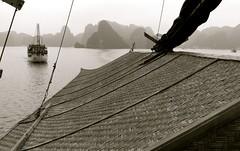 vietnam meilleures