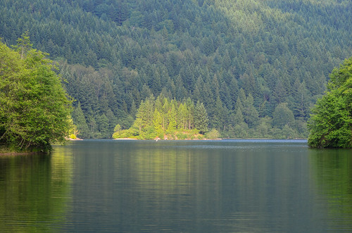 <p>Hicks Lake, British Columbia, Canada<br /> Nikon D5100, 70-300 mm f/4.5-5.6<br /> June 7, 2013</p>