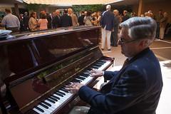 musician, pianist, piano, keyboard, organist, player piano,