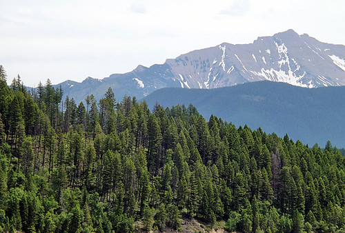 mtns from hungry horse 077