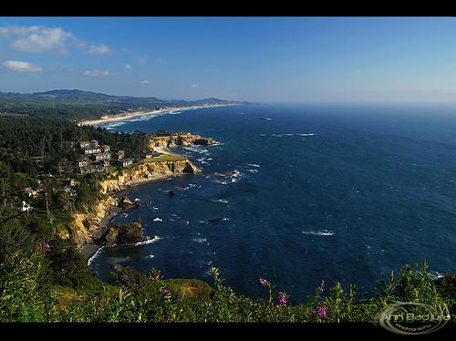 ocean trees usa beach nature oregon landscape scenery rocks cliffs pacificocean oregoncoast ottercrestloop